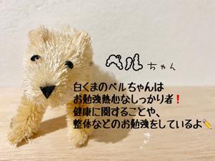ペル新自己紹介.jpg