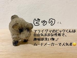 新ビック自己紹介.jpg
